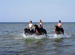 Riding along in the Baltic surf on Poel