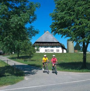 Cyclist near Schonach
