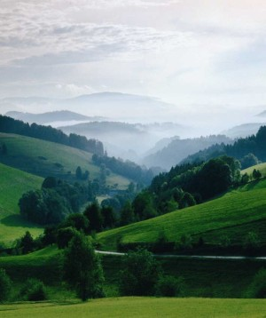 The Upper Black Forest near Hinterzarten