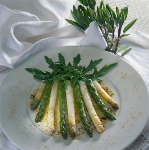 Green asparagus, fresh from the field
