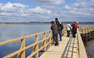 Bad Buchau: the Federsee wooden walkway (Federseesteg)