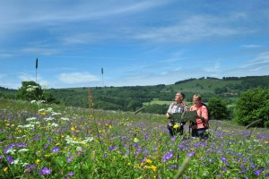 Two walkers on the Hochrhöner premium trail enjoying the view of colourful mountain meadows