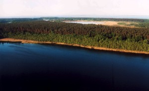 Müritz National Park, eastern shore of lake