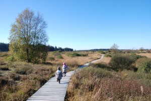 Children on a boardwalk in Hohes Venn Nature Park
