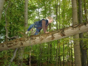 Girl climbing over a tree trunk