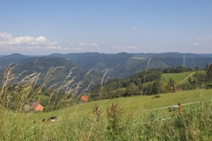 Panoramic view of the Kinzig valley