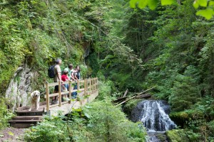 Walkers in dramatic Lotenbachklamm Gorge on the Gorges Trail