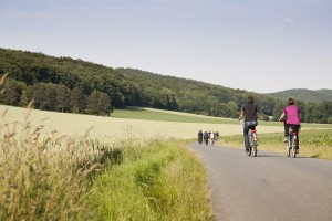 Miles of cycle trails of varying levels of difficulty are just waiting to be explored.
