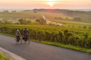 Sunset at the German Wine Route
