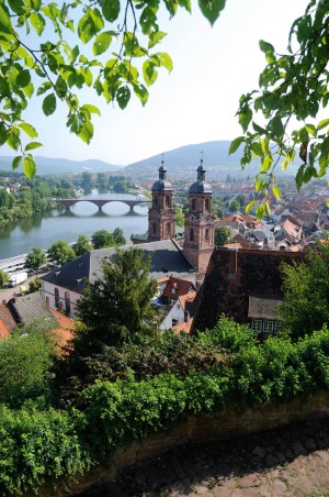 View of Miltenberg