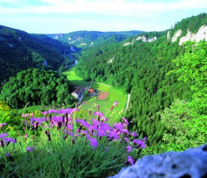The view of the Danube Valley from the Kallenberg castle ruins