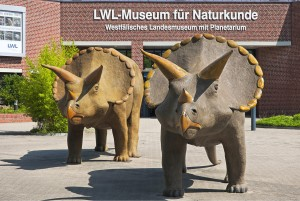 Münster in Westphalia: museum of natural history