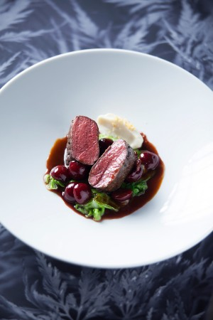 Medallion of venison