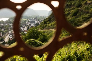 A beautiful wine view, Middle Rhine
