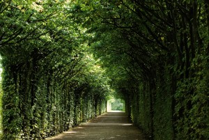 Bayreuth: Heremitage, Arbour, baroque garden creation