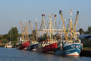 Husum: Boats in the harbour at dusk