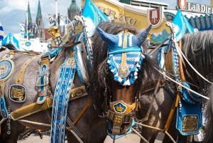 Munich: Oktoberfest, horse-drawn wagon of the Spaten brewery