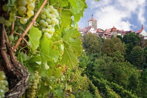 Rothenburg ob der Tauber: vines and White Tower