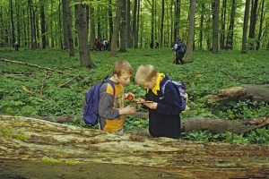 Children discover nature in Hainich National Park