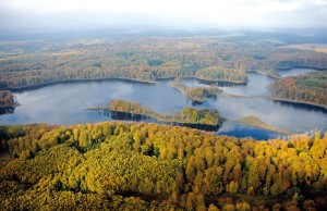 Müritz National Park, Serrahn beech forest (UNESCO World Natural Heritage) on the shore of Lake Schweingarten